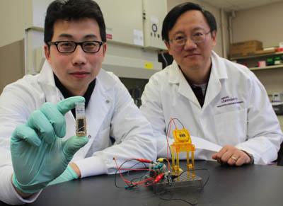 Американцы создали энергоемкую батарейку, работающую на сахаре