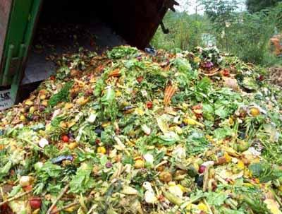 Новое биотопливо из растительных отходов
