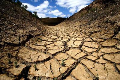 Изменение климата Земли сулит высокую смертность