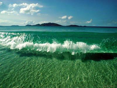 Океан стал индикатором положения дел на планете
