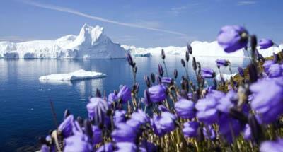 потепление в Арктике