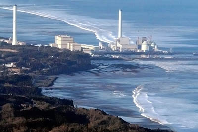 В рыбе, выловленной у берегов префектуры Фукусима, зафиксирован высокий уровень радиации