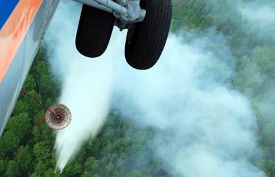Минприроды: большинство субъектов РФ готовы к пожароопасному сезону