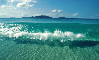 Источником биотоплива нового поколения станет морская вода