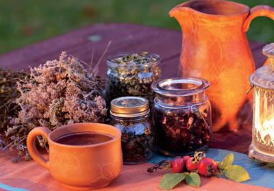 Народная медицина: лекарственные растения от стресса