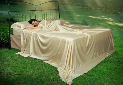 Сосновый эко-тестиль Fuoco di Legno в производстве постельного белья, полотенец и банной одежды
