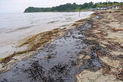 Глава Приморья требует предоставления снимков со спутника для выявления виновников в разливе нефти