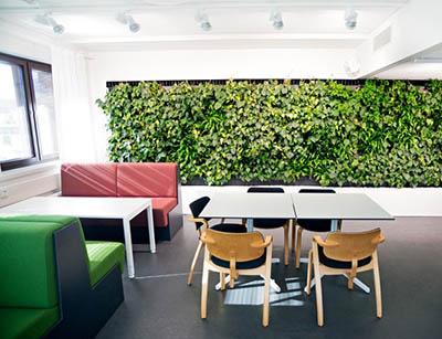 Зеленые вертикальные сады Naava для помещений