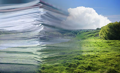 Как перевести иностранный текст на тему экологии?