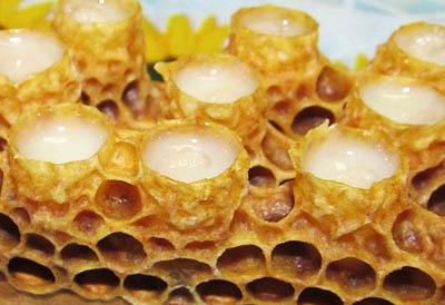 Польза продуктов пчеловодства: маточное молочко и пчелиный яд (ч.3/3)