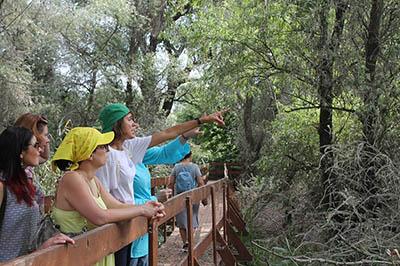 Астрахань заняла пятое место в рейтинге лучших регионов для экотуризма