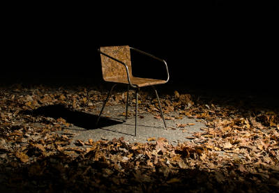 Опавшие листья стали материалом для изготовления мебели