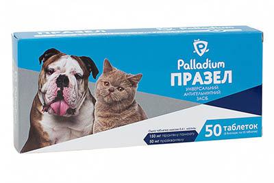 Таблетки от гельминтов для домашних собак и кошек