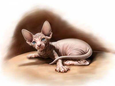 Кошки – пришельцы из далекой звезды Сириус