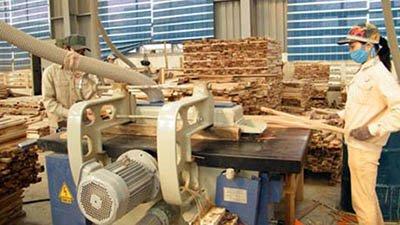 Переработка отходов древесины как бизнес: зарабатываем на порубочных остатках