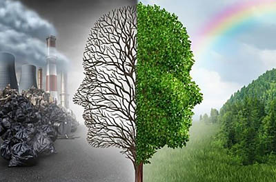 6 видео об экологических проблемах, меняющих будущее землян